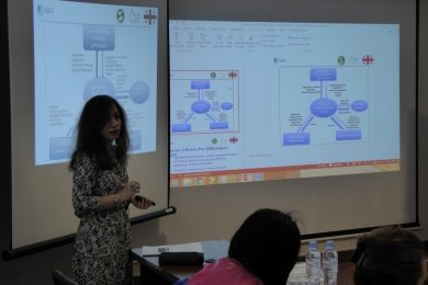 Consulting services on Quality Management System for the National Center Disease Control, Georgia, CH2M Hill - 2016 - Georgia