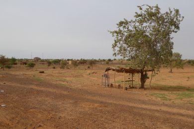 Tuberculosis Laboratory Network assessment, Niger - 2017 - Niger