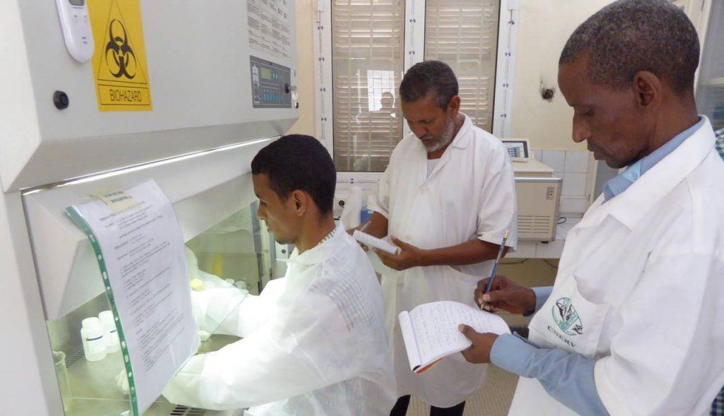 Worldwide Global Health Security Agenda laboratory strengthening activities for CDC